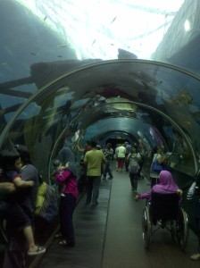 Marine Life Park entrance